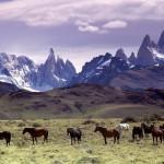 Patagonia, hermosa e impactante