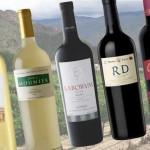 La Ruta del Vino de Salta