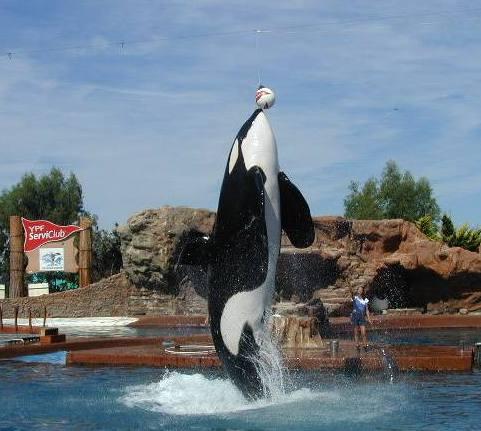 Paseos y excursiones en San Clemente del Tuyu