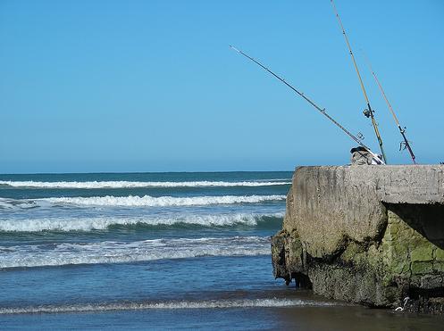 Pescando en Mar del Plata