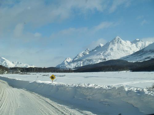 Sorpresas camino a Ushuaia
