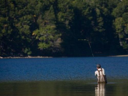 chimehuin pesca