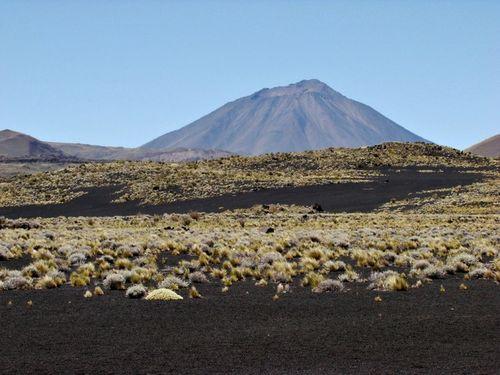 Travesia al volcan Payun Matru de Mendoza