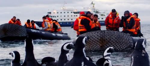 Patagonia, un crucero por el fin del mundo