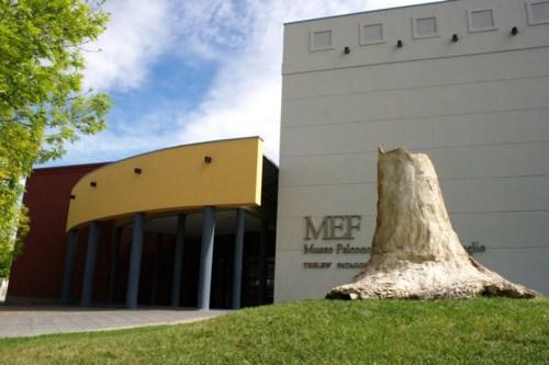 El Museo Paleontológico Egidio Feruglio