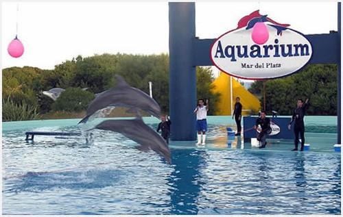 Aquarium, oceanario de Mar del Plata