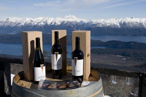 Vinos y viñedos de la Patagonia